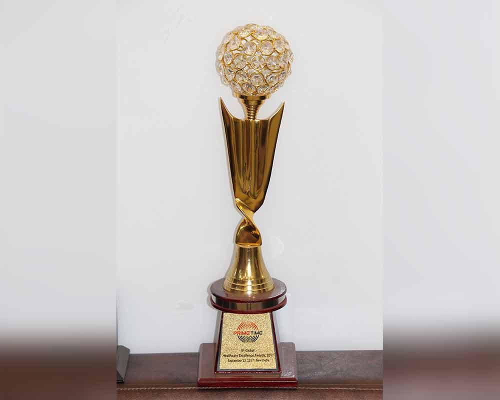 Global Healthcare Excellence Award, 2017